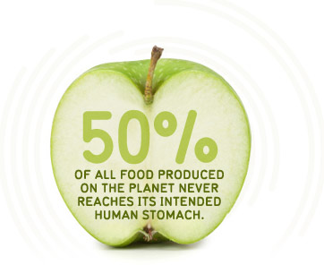 50% of all food produced on the planet never reaches its intended human stomach